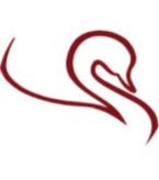 Silver Swan Logo