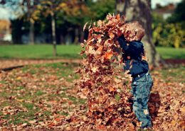 Boy playing in pile of autumn leaves
