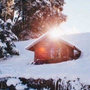 Snow Chalet Tree