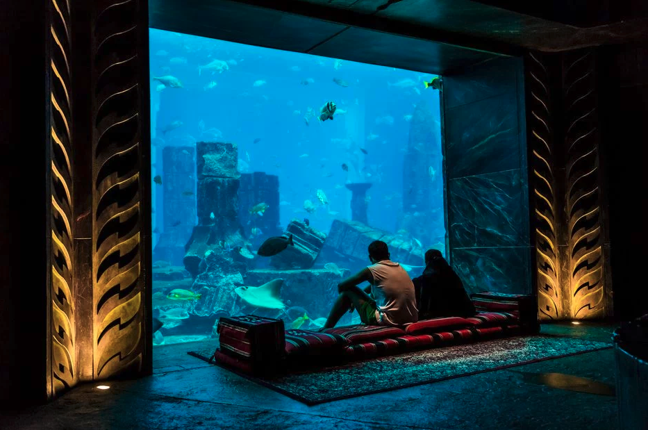 A couple sitting of a bench looking into a huge tank at an aquarium